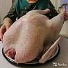 Продаётся мясо индейки 079253905 Федор