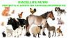 Agitiv alimentar si insecticid natural pentru animale, pasari, reptili