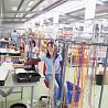 Muncitori la fabrica de cablaje. Europa.