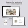 Servicii creative de Web Design prin outsourcing
